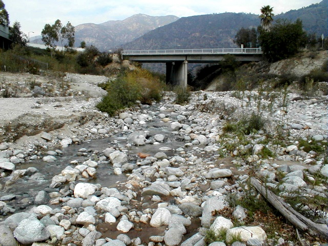 View of the New York Drive bridge from Eaton Canyon Wash. We are looking north. The stream ends in a basin here, and sinks into the earth, recharging local water tables. This is about a ten-minute stumble south from the Nature Center.